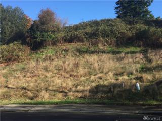 102-XX 21st Ave SW, Seattle, WA 98146 (#1082000) :: Ben Kinney Real Estate Team
