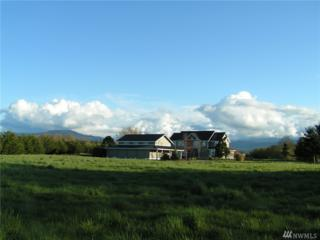 313 Territory 15 Acres, Sequim, WA 98382 (#1082134) :: Ben Kinney Real Estate Team