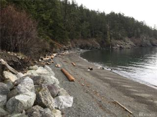 3084 Point Lawrence Rd, Orcas Island, WA 98279 (#1082229) :: Ben Kinney Real Estate Team