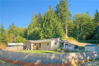 2944 E Lakeview, Langley, WA 98260 (#1082240) :: Ben Kinney Real Estate Team