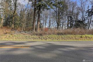 0 East Camano Drive, Camano Island, WA 98282 (#1082244) :: Ben Kinney Real Estate Team
