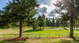 3701 Northshore Blvd NE, Tacoma, WA 98422 (#1082428) :: Ben Kinney Real Estate Team