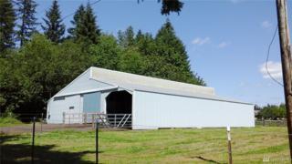 0 NE 133rd Ct, Battle Ground, WA 98604 (#1082460) :: Ben Kinney Real Estate Team