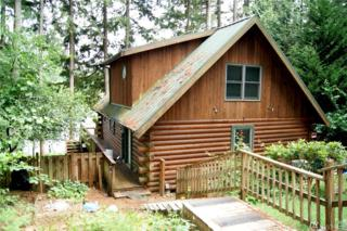 2009 194th Ave KP, Lakebay, WA 98349 (#1082552) :: Priority One Realty Inc.