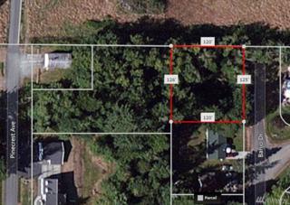1111 Banjo Dr, Coupeville, WA 98239 (#1082602) :: Ben Kinney Real Estate Team