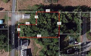 1111 Pinecrest Ave, Coupeville, WA 98239 (#1082626) :: Ben Kinney Real Estate Team