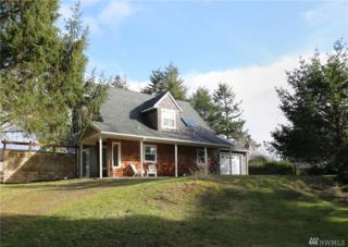 29722 Sandridge Rd, Ocean Park, WA 98640 (#1082651) :: Ben Kinney Real Estate Team