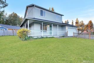 506 Burnham Lane SE, Rainier, WA 98576 (#1082811) :: Ben Kinney Real Estate Team