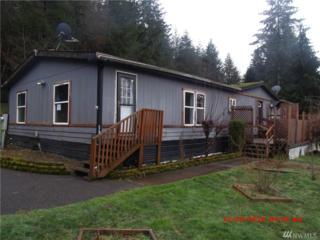 195 Frye Rd, Castle Rock, WA 98611 (#1082854) :: Ben Kinney Real Estate Team