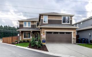 22359 SE 282nd Lane, Maple Valley, WA 98038 (#1083031) :: Ben Kinney Real Estate Team
