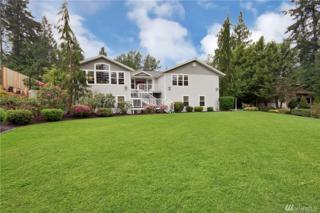 22928 164th Ave E, Graham, WA 98338 (#1083074) :: Ben Kinney Real Estate Team
