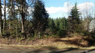 281 E Road Of Tralee, Shelton, WA 98584 (#1083298) :: Ben Kinney Real Estate Team