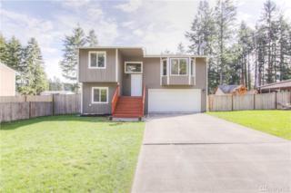25009 50th Ave E, Graham, WA 98338 (#1083299) :: Ben Kinney Real Estate Team