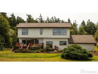 225 Rainshadow Dr, Port Townsend, WA 98368 (#1083353) :: Ben Kinney Real Estate Team