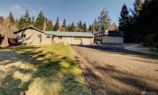 52 Dekay Rd, Hoquiam, WA 98550 (#1083548) :: Ben Kinney Real Estate Team