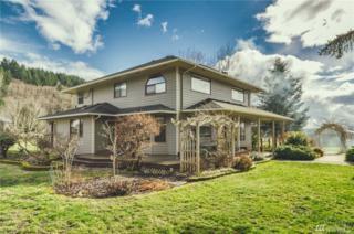 681 Curtis Hill Rd, Chehalis, WA 98532 (#1083598) :: Ben Kinney Real Estate Team
