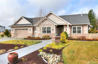 9033 Little Bear Ct SE, Olympia, WA 98501 (#1083659) :: Ben Kinney Real Estate Team