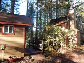 201 NE Circle Dr, Tahuya, WA 98588 (#1083712) :: Ben Kinney Real Estate Team