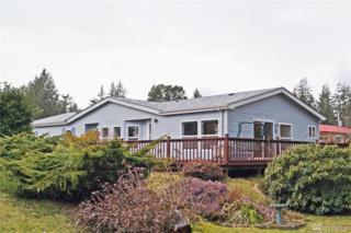 123 W Fairway Dr, Elma, WA 98541 (#1083769) :: Ben Kinney Real Estate Team