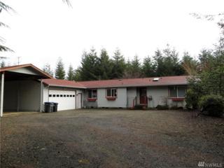 31 E Susan Ct, Union, WA 98592 (#1083786) :: Ben Kinney Real Estate Team