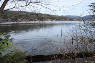 147 Log Camp Lane, Beaver, WA 98305 (#1083838) :: Ben Kinney Real Estate Team