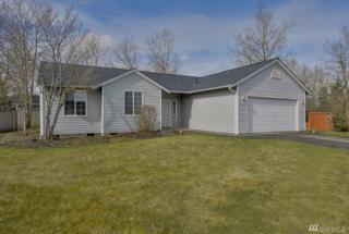 21402 38th Av Ct E, Spanaway, WA 98387 (#1083878) :: Ben Kinney Real Estate Team