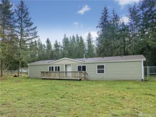 15229 Vail Cut Off Rd SE, Rainier, WA 98576 (#1083880) :: Ben Kinney Real Estate Team