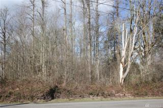 0 154th Ave E, Puyallup, WA 98374 (#1083947) :: Ben Kinney Real Estate Team