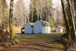 251 River Park Rd, Forks, WA 98331 (#1084033) :: Ben Kinney Real Estate Team