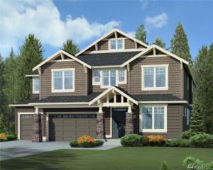 282 212th Place NE, Sammamish, WA 98074 (#1084057) :: Ben Kinney Real Estate Team