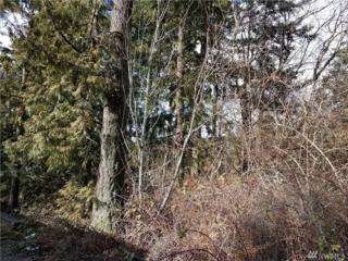 1128 34th St, Bellingham, WA 98229 (#1084124) :: Ben Kinney Real Estate Team