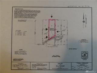 2-Lot Greenleaf Lane, Shelton, WA 98584 (#1084227) :: Ben Kinney Real Estate Team