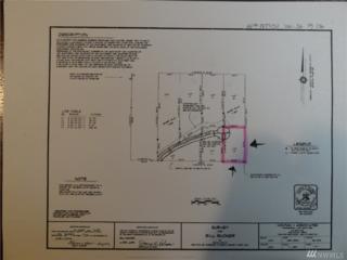 4-Lot Greenleaf Lane, Shelton, WA 98584 (#1084239) :: Ben Kinney Real Estate Team