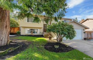14320 57th Dr SE, Everett, WA 98208 (#1084285) :: Ben Kinney Real Estate Team