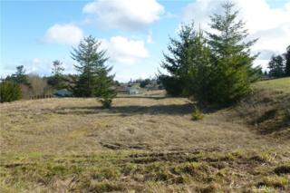 999 Secluded Wy, Sequim, WA 98382 (#1084309) :: Ben Kinney Real Estate Team
