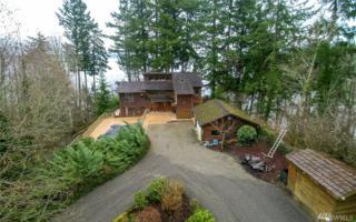 7646 Sandy Point Beach Rd NE, Olympia, WA 98516 (#1084880) :: Ben Kinney Real Estate Team