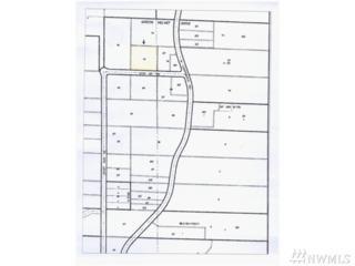 200-XX 6th St NE, Snohomish, WA 98290 (#1084973) :: Ben Kinney Real Estate Team
