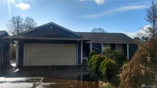7125 Scarboro Lane, Ilwaco, WA 98624 (#1085174) :: Ben Kinney Real Estate Team