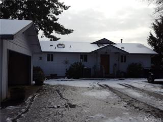 231 N Cedardale Lane, Hoodsport, WA 98548 (#1085220) :: Ben Kinney Real Estate Team