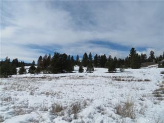 0-Lot 1 Buck Ave, Republic, WA 99166 (#1085316) :: Ben Kinney Real Estate Team