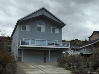 440 W Beach Dr, Orondo, WA 98843 (#1085376) :: Ben Kinney Real Estate Team