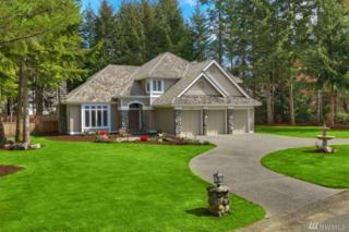 11719 Hunter Lane NW, Gig Harbor, WA 98332 (#1085393) :: Ben Kinney Real Estate Team