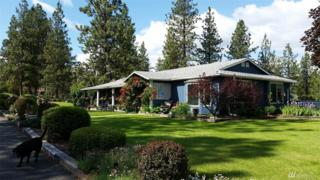 5 Oakes Dr, Tonasket, WA 98855 (#1085517) :: Ben Kinney Real Estate Team