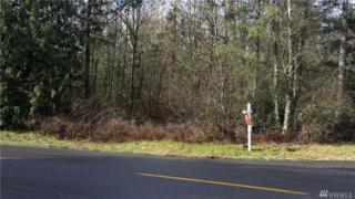 16471 SE 153rd Ave, Yelm, WA 98597 (#1085736) :: Ben Kinney Real Estate Team