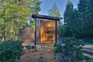 195536 Highway 101, Quilcene, WA 98376 (#1085892) :: Ben Kinney Real Estate Team