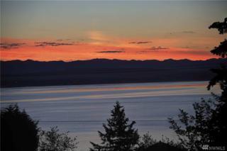 1353 Sunrise Estates Place, Camano Island, WA 98282 (#1086025) :: Ben Kinney Real Estate Team