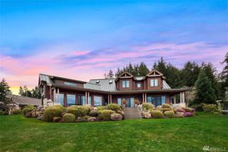 715 Chinook Dr, Fox Island, WA 98333 (#1086112) :: Ben Kinney Real Estate Team