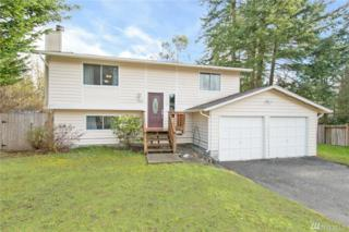 9608 138th St Ct NW, Gig Harbor, WA 98329 (#1086231) :: Ben Kinney Real Estate Team