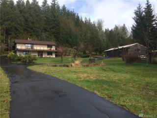 3148 Spirit Lake Hwy, Silverlake, WA 98645 (#1086240) :: Ben Kinney Real Estate Team