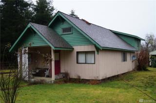 2591 North River, Cosmopolis, WA 98537 (#1086252) :: Ben Kinney Real Estate Team